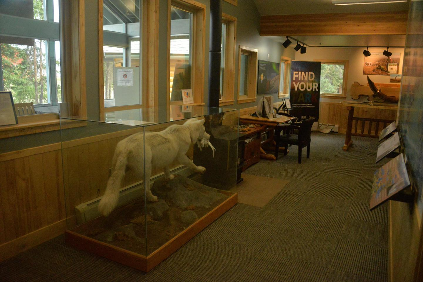 Interior of Bettles Ranger StationThe interior of the Bettles Ranger Station has information and exhibits about the park and its wildlife.