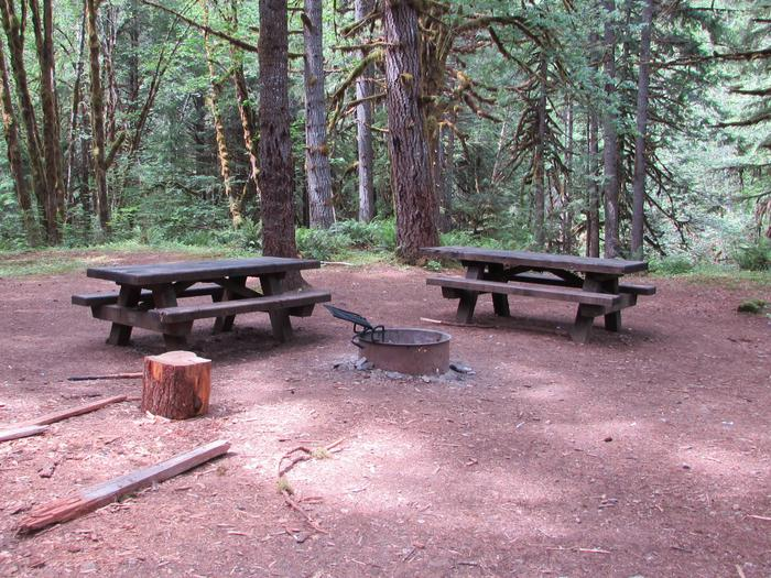 Site 1A large walk-in campsite with two picnic tables