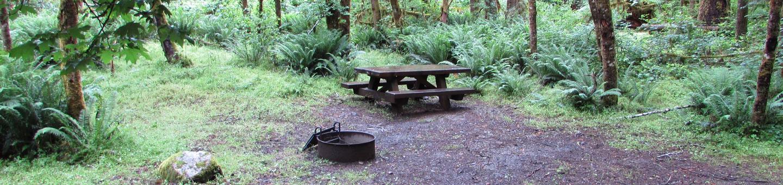 Camp Site #5