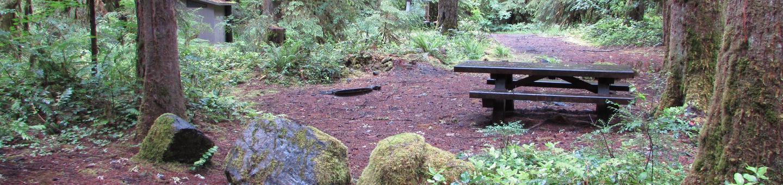 Camp Site #7