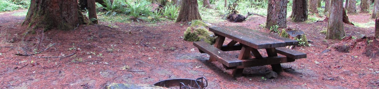 Camp Site #8