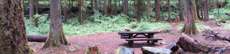 Camp Site #9