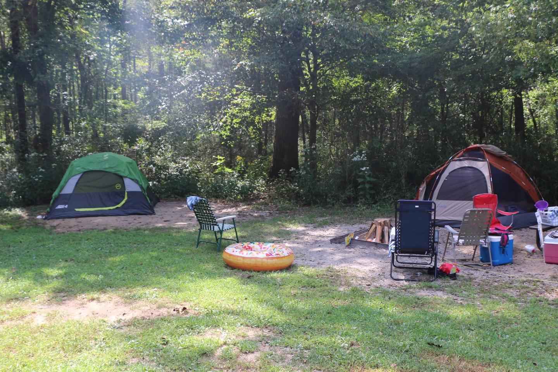 Steel Creek Camp Site #26-7Site 26