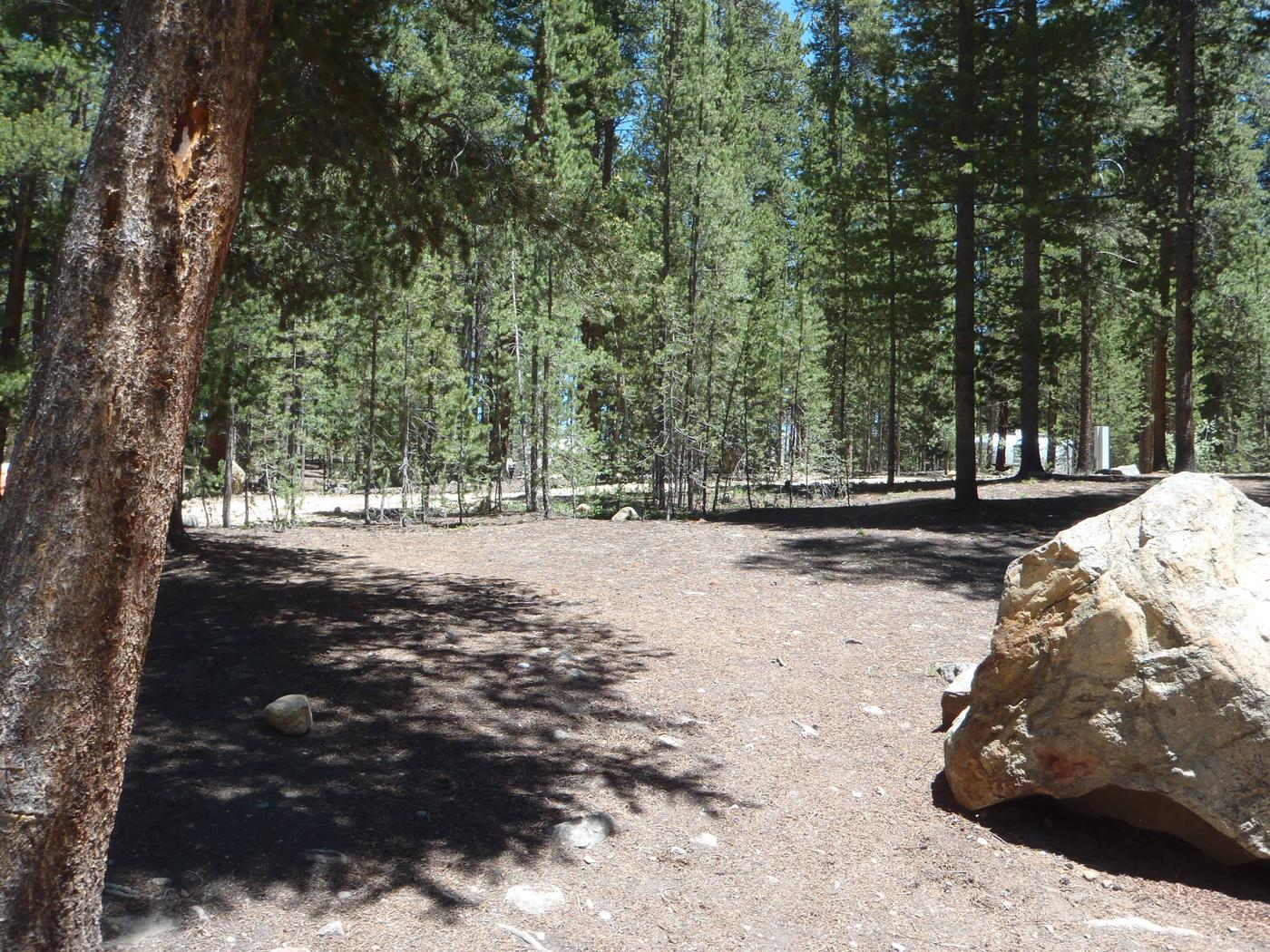Molly Brown Campground, site 22 clearing