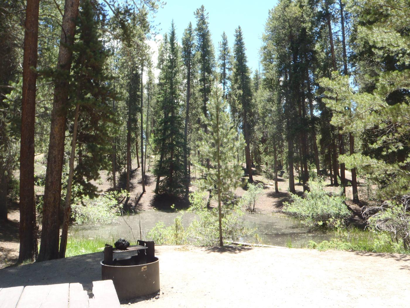 Molly Brown Campground, site 22 view