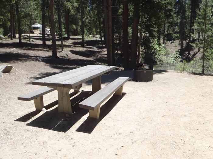Molly Brown Campground, site 22  picnic table and fire ring