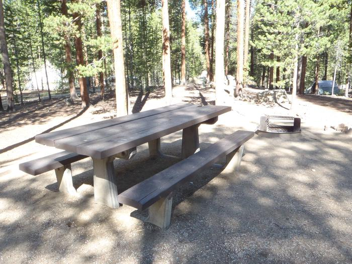 Molly Brown Campground, site 27 picnic table and fire ring 6