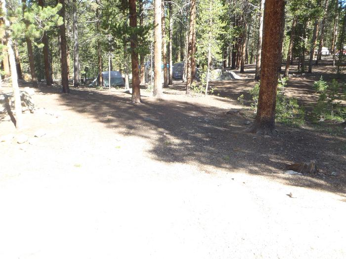 Molly Brown Campground, site 27 clearing