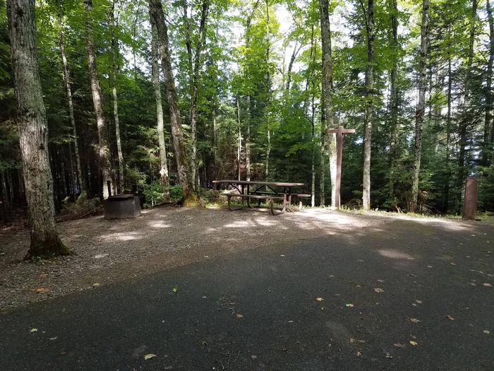 Left view of Lake Ottawa Campground campsite 22Left view of Lake Ottawa Campground campsite 22.