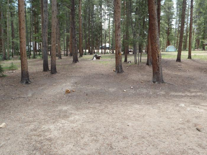 Molly Brown Campground, site 28 clearing 2