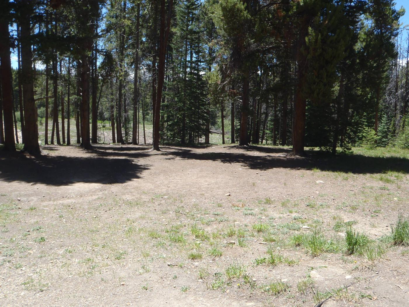 Molly Brown Campground, site 36 clearing