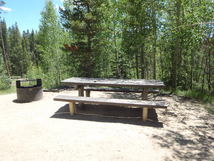 Molly Brown Campground, site 38 picnic table and fire ring 3