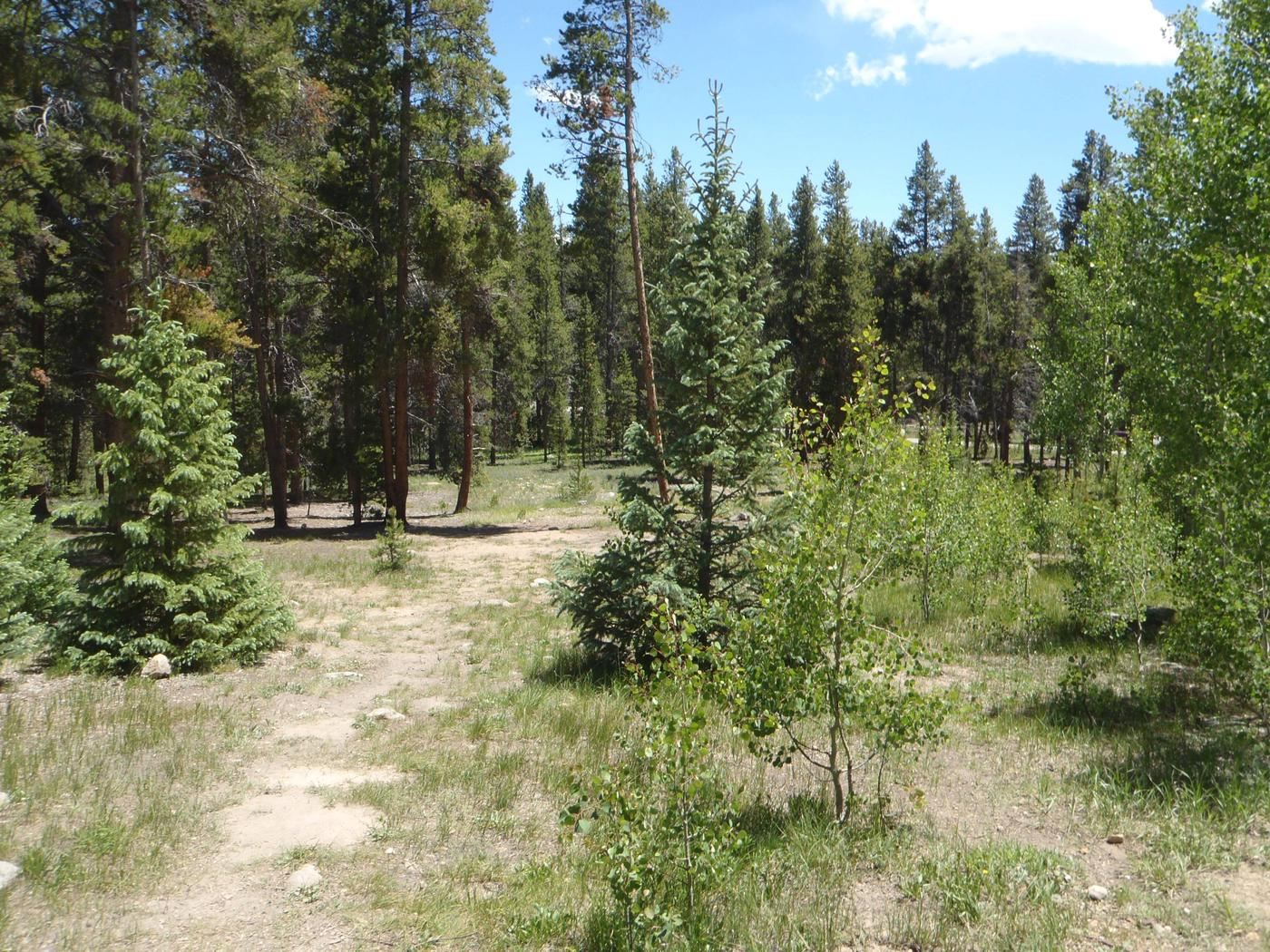 Molly Brown Campground, site 38 view 2