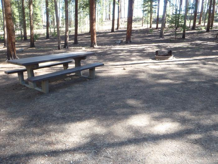 Molly Brown Campground, site 47 picnic table