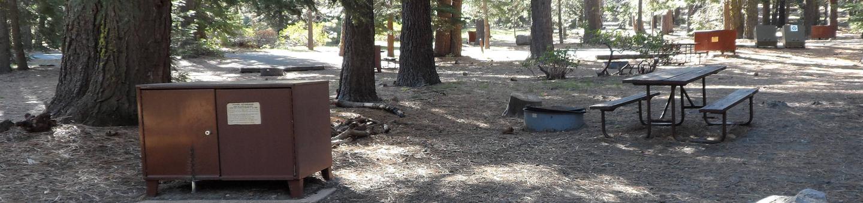 D5Manzanita Lake Campground, Loop D, Site D5