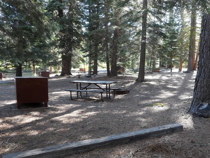 D6Manzanita Lake Campground, Loop D, Site D6