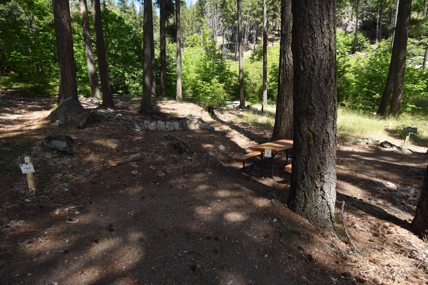 View of campsite with picnic table and tent pads.Lakeview Campsite 1