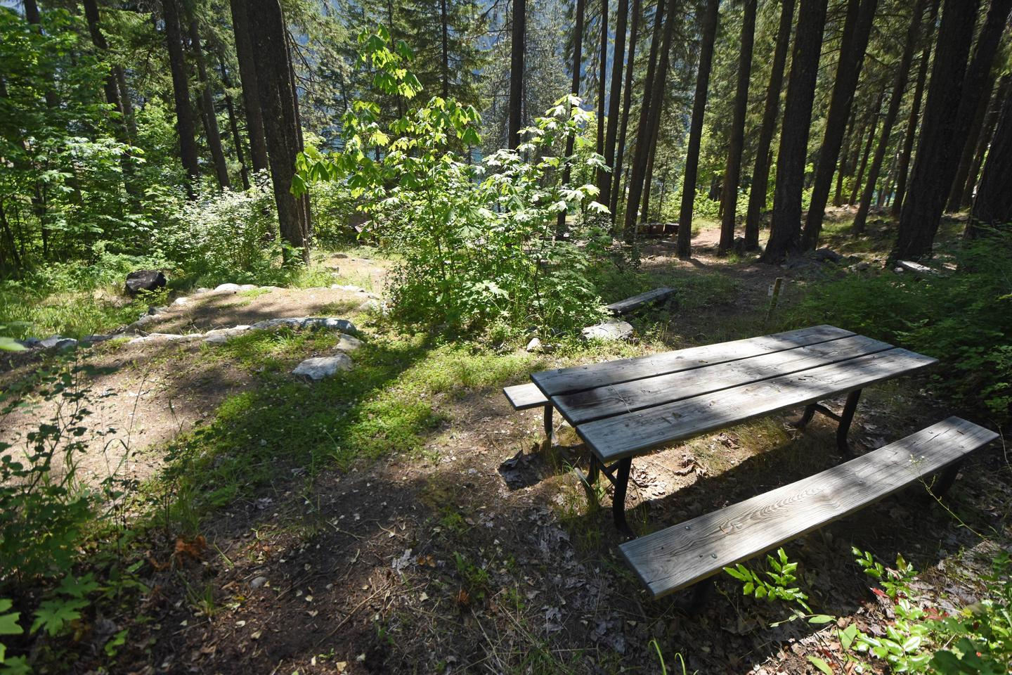 View of campsite with picnic table and tent pads.Lakeview Site 2