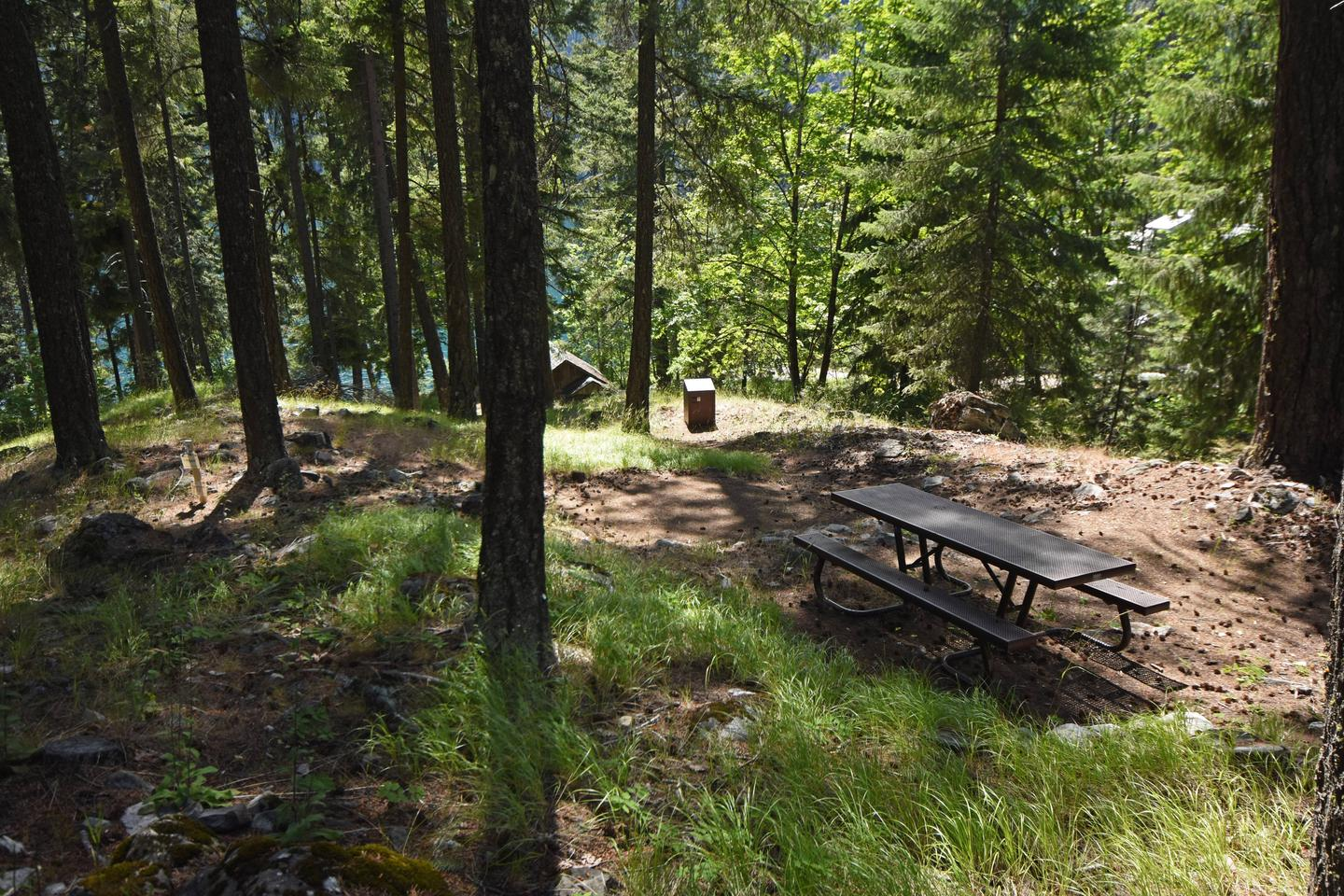 Lakeview site 9 with picnic table and tent pads in ponderosa pine forestLakeview Site 9