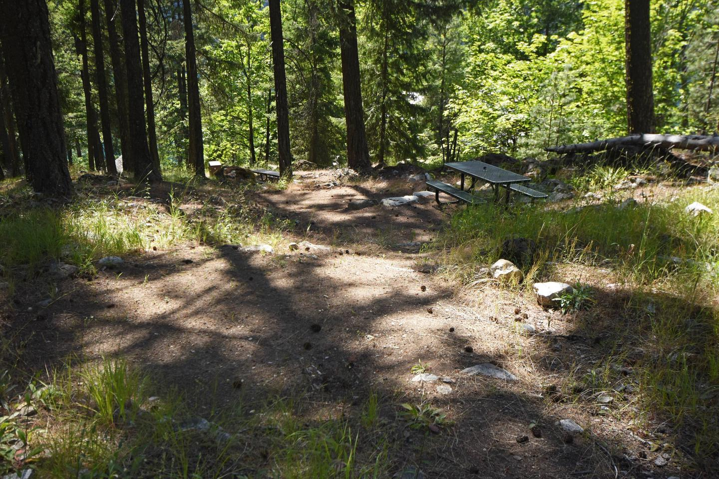 Lakeview campsite 8 with picnic table in ponderosa forestLakeview Site 8