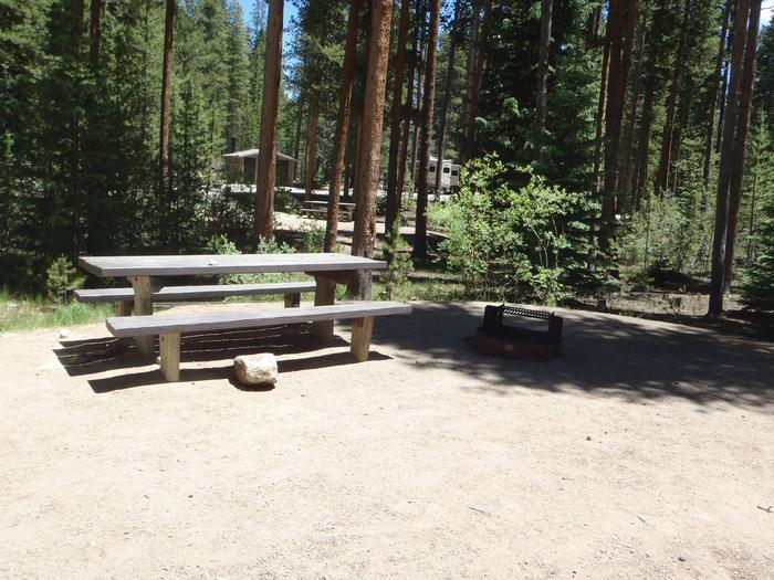 Molly Brown Campground, site 48 picnic table and fire ring 5