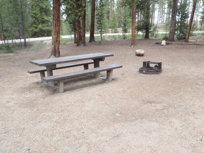 Molly Brown Campground, site 49 picnic table and fire ring 4