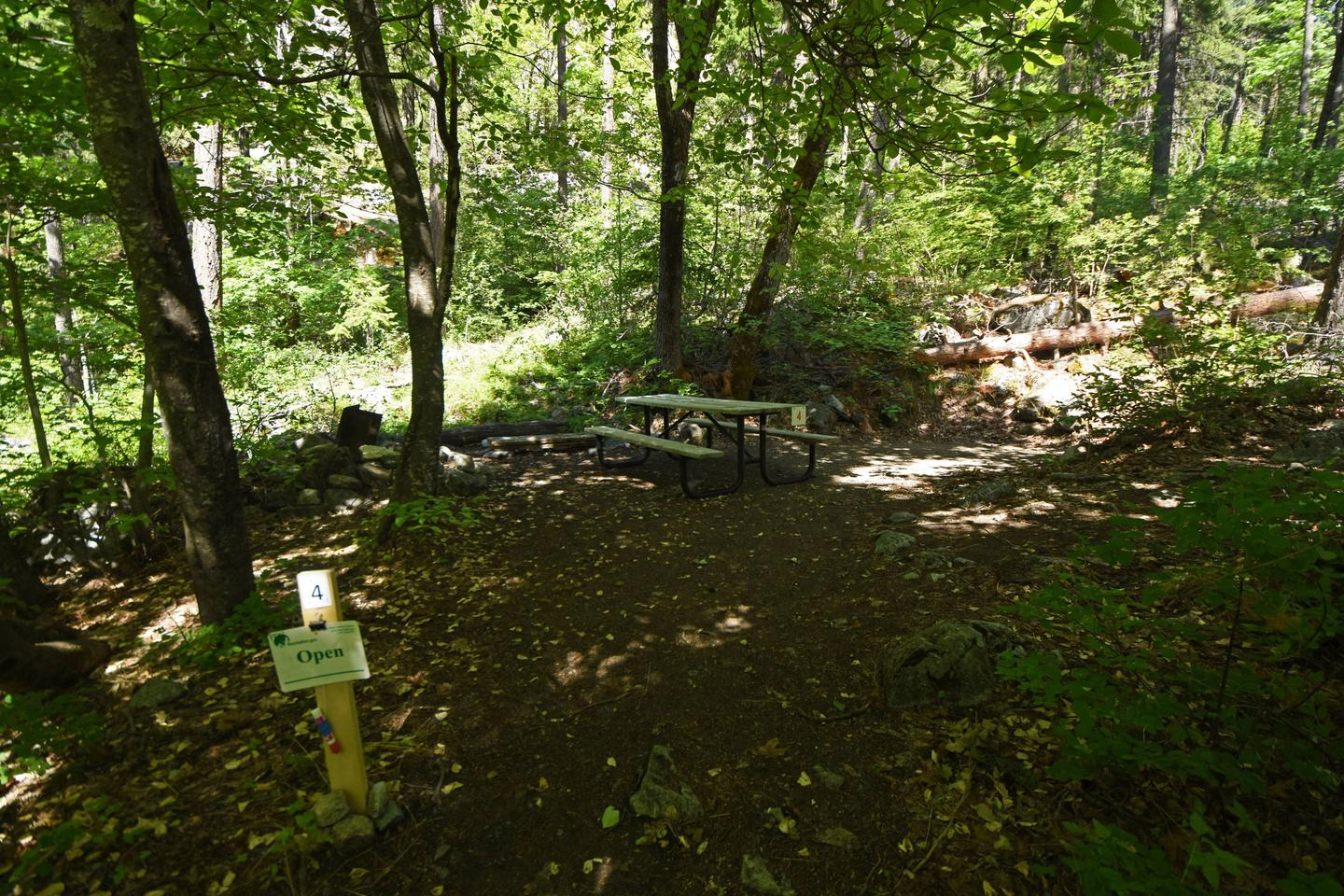 Campsite with picnic table in the woods.Purple Point Campsite 4