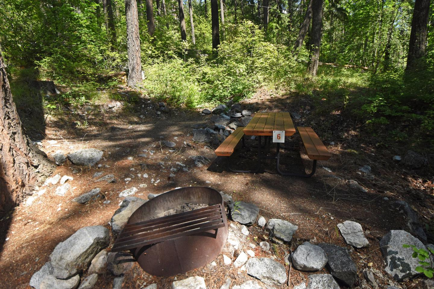 Campsite with picnic table in the woods.Lakeview Site 6