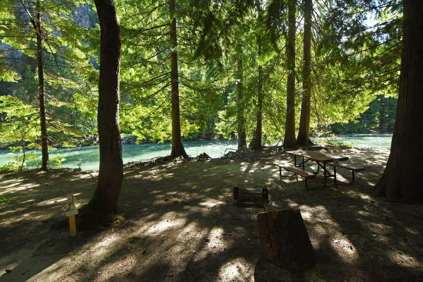 Campsite in cedar forest by riverHarlequin Site 4