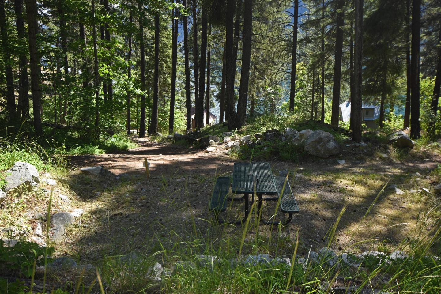 Campsite in cedar forest by riverHarlequin Site 6