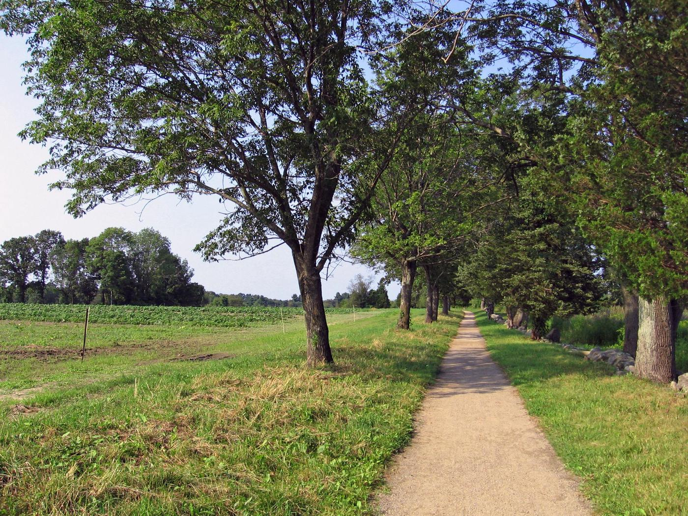 The Battle Road TrailWalk in the footsteps of history