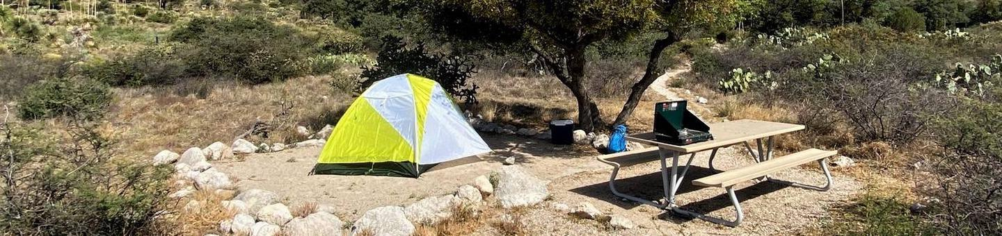 Tent Site number one. with picnic table, a two-person tent on the tent pad which is delineated by large rocks.Tent Site number one shown a with two-person tent on tent pad.