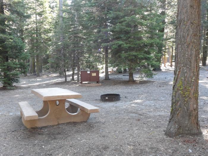 B15Manzanita Lake Campground, Site B15