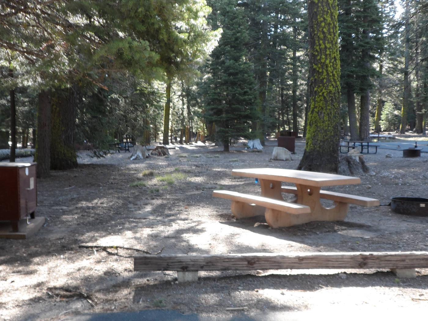 B17Manzanita Lake Campground, Site B17