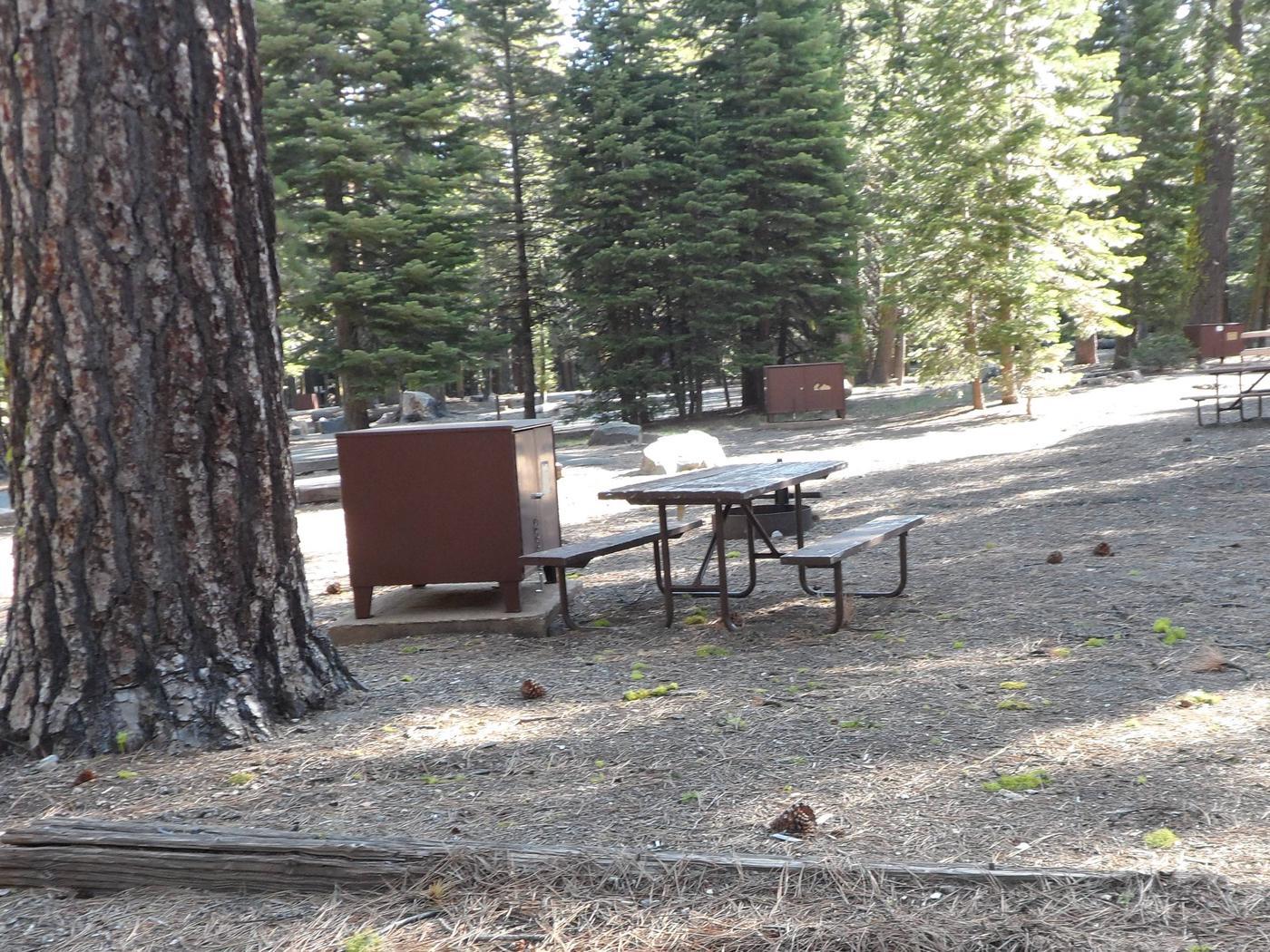 B23Manzanita Lake Campground, Site B23