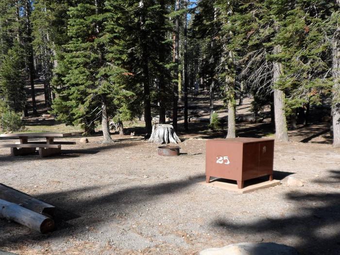 B25Manzanita Lake Campground, Site B25