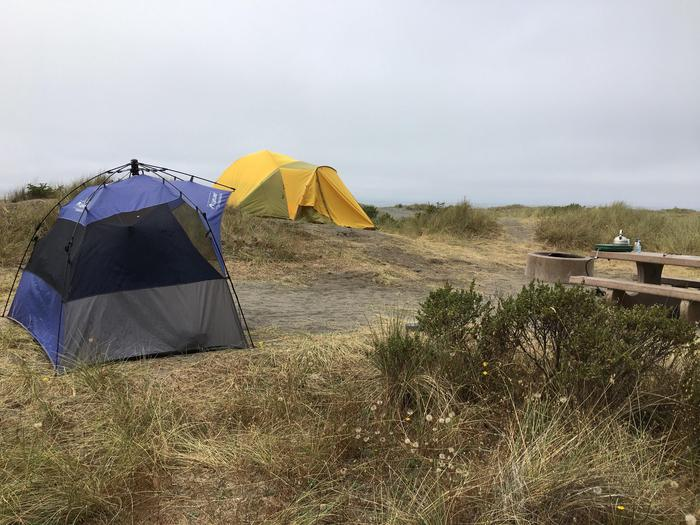 Tents at Gold Bluffs Beach campgroundGold Bluffs Beach campsites are all exposed to fog and strong winds.