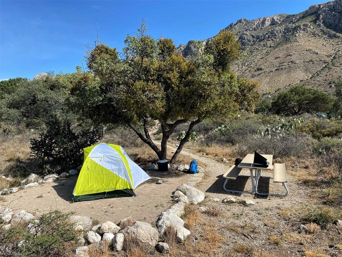 Campsite number one, shown with tent on tent pad, picnic table to the right side and a single tree that provides some shade to the site.Campsite number one, shown with tent on tent pad.