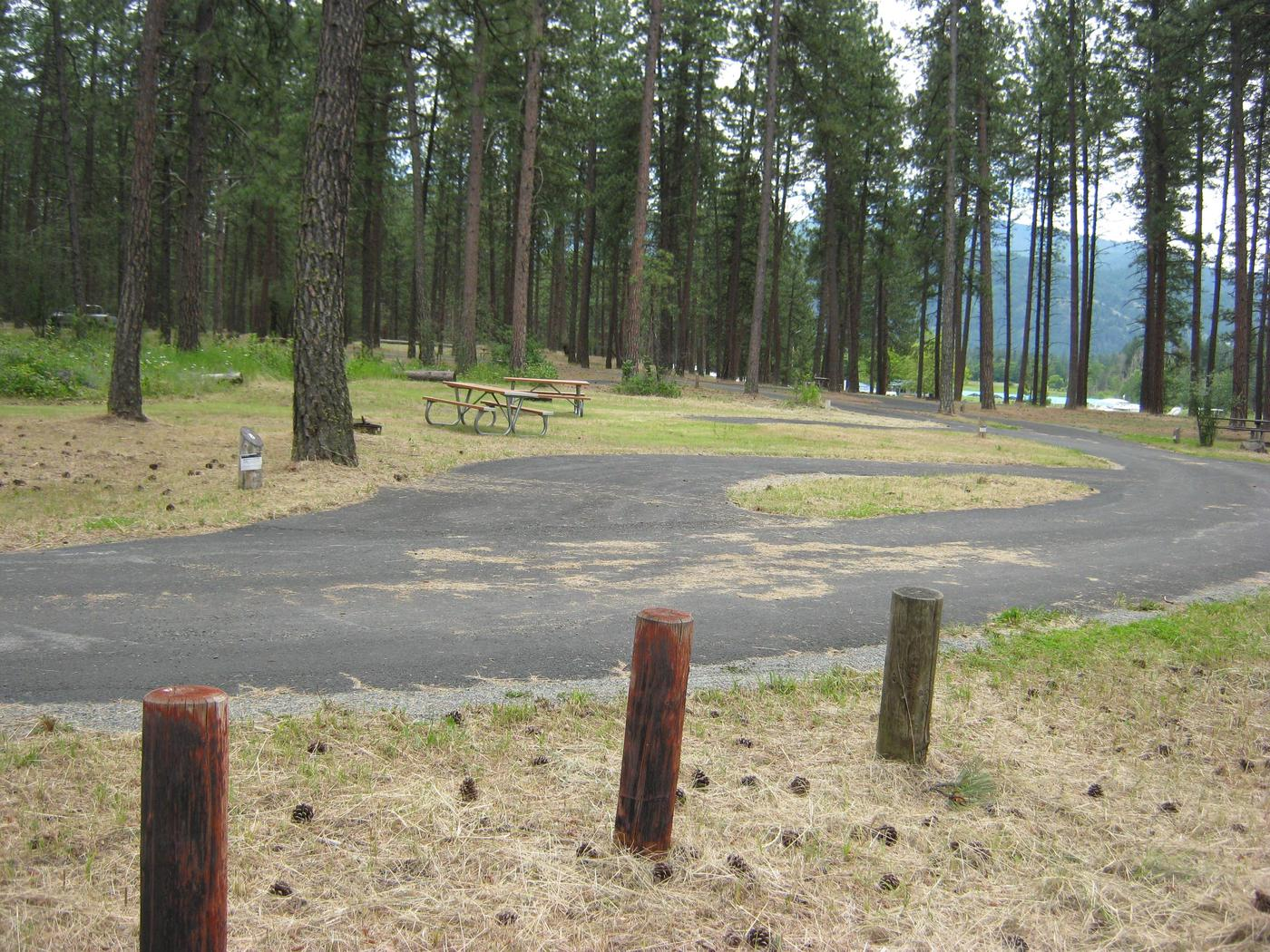 Site 8, Pine Trees in Background, pull throughSite 8, Pull Through, Pine trees in background