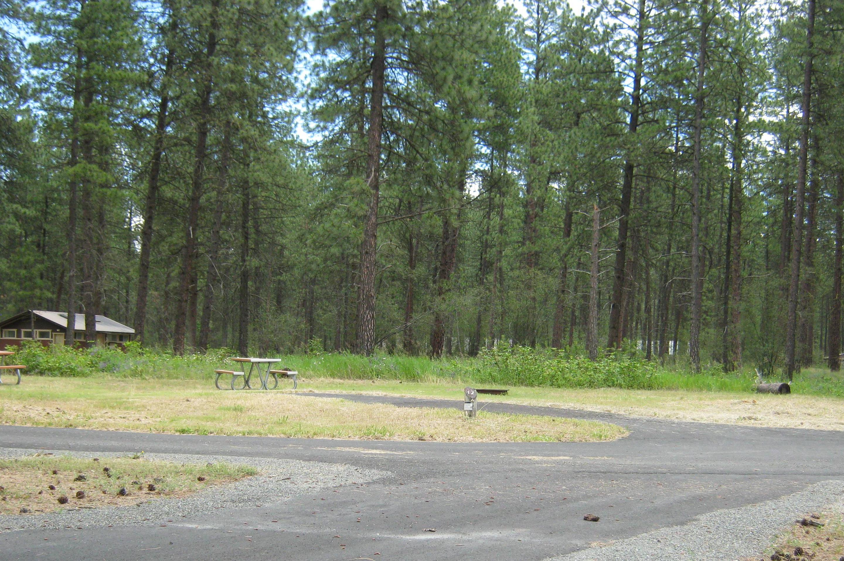 Site 12, Back inSite 12, Back in, Trees and comfort station in background
