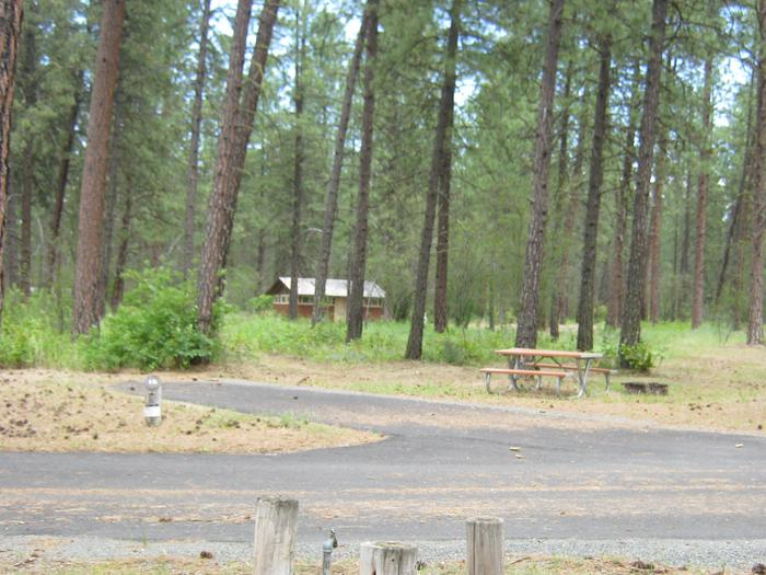 Pine trees in the back dropBack in, paved parking, trees and comfort station in background