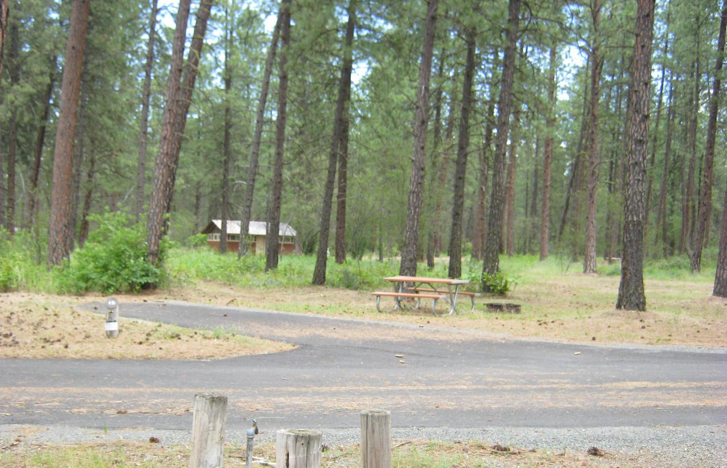 Site 15, back inSite 15, Back in, Trees and comfort station in background