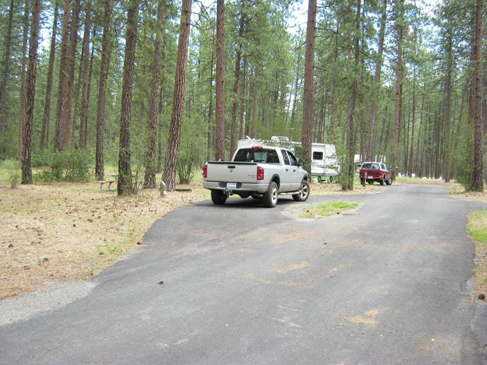 Site 18, pull throughSite 18, Pull through, Trees and camp host site in background