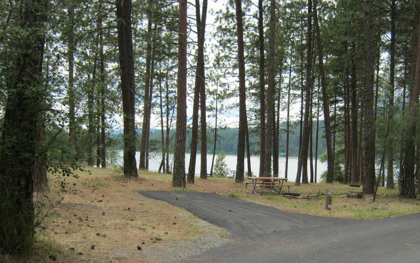 Site 19, Back inSite 19, Back in, Trees and lake in background