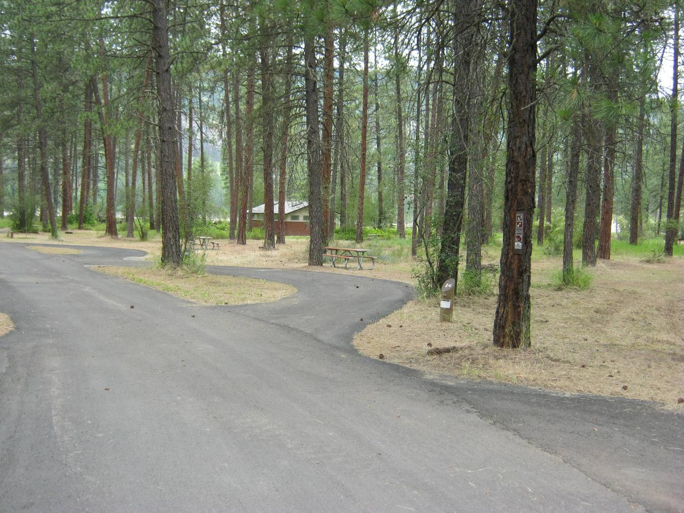 Alt view of Site 24Alternative view of site 24, Pull Through, Pine trees and comfort station in background