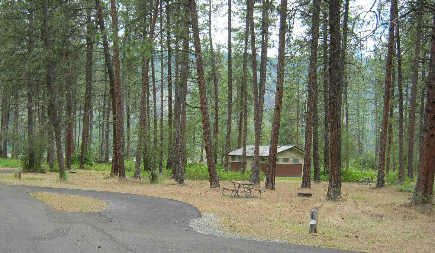 Site 27, Pull ThroughSite 27, Pull Through, Pine trees and comfort station in backgorund