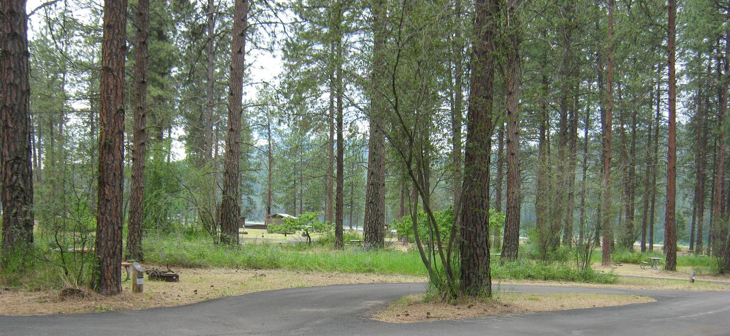 Wide view of site 28Site 28, Pull Through, Pine trees in background