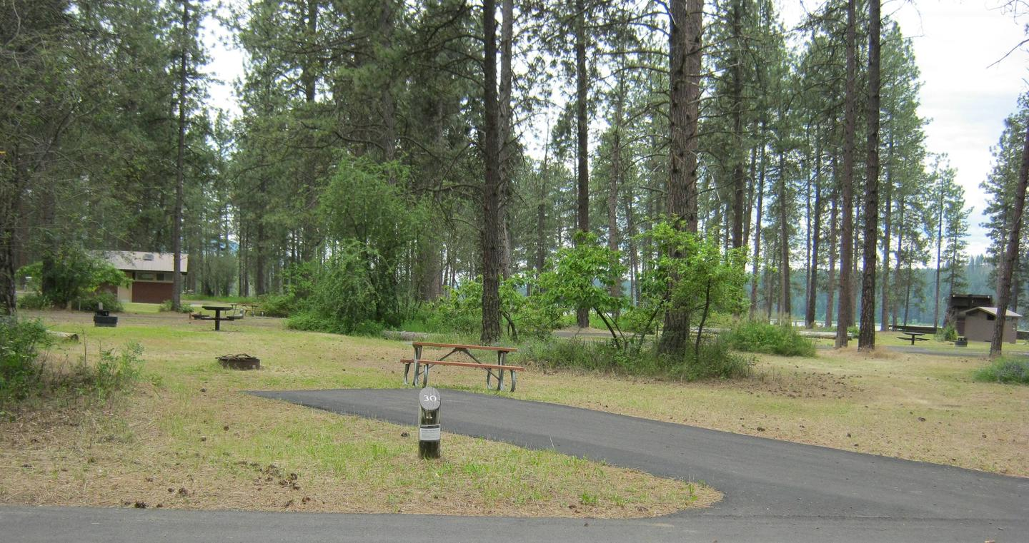 Site 30, Back inSite 30, Back in, Pine trees and comfort station in background