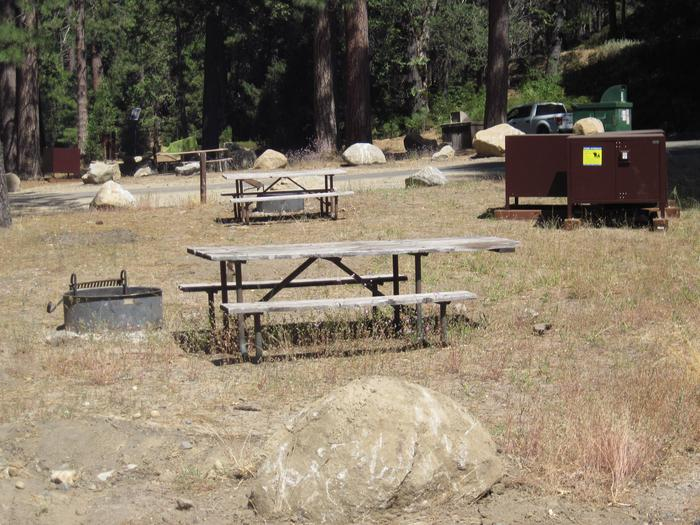Food locker, picnic table, and fire ringSite 16
