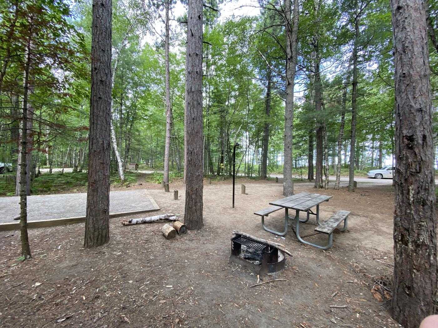 Tent site,picnic table, fire ring and lantern pole.